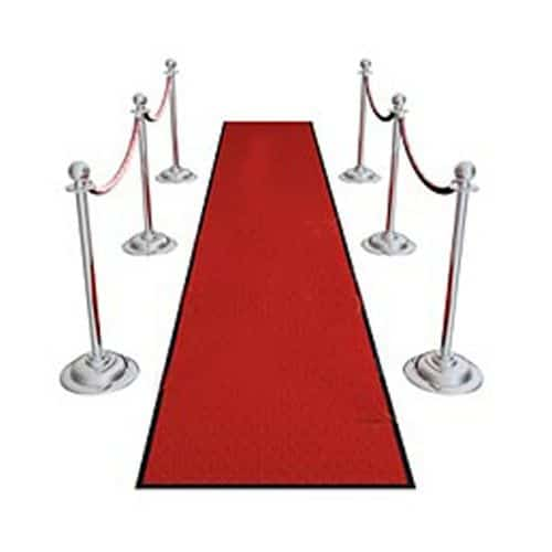 Red Carpet and ropes photo